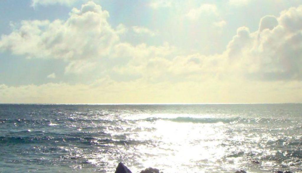 shore_15648c (2)